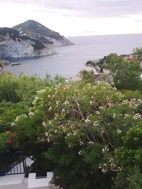 PONZA -Mattina dal terrazzo