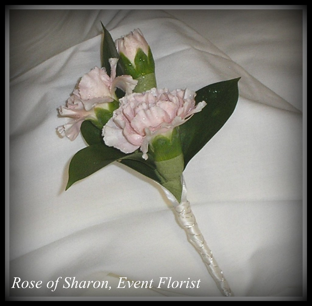 Boutonniere Pink Miniature Carnations 3 Rose Of Sharon Floral