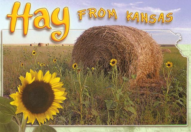 Kansas Hay Bale State Map Postcard