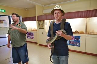 Reptile Center, Alice Springs, NT, Australia | by LLudo