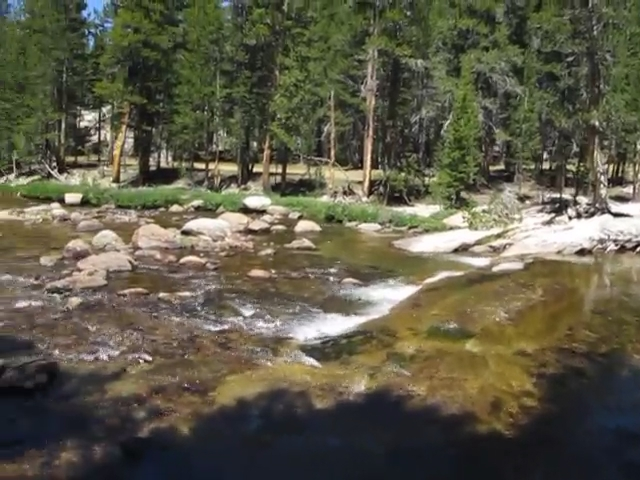 3160 Video of the Tuolumne River in Lyell Canyon