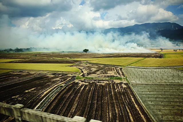 Train to Hualien - Burning Rice Fields