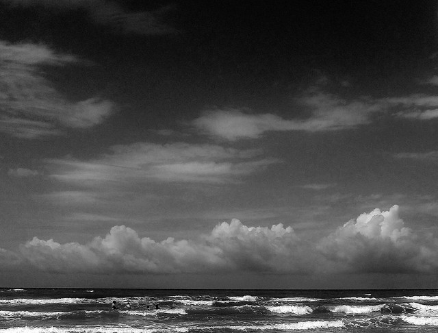 Before the wind storm in b/w