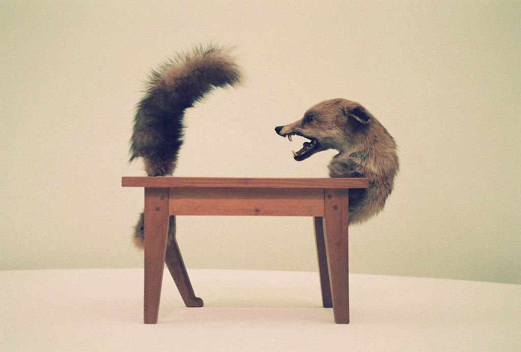 Victor Brauner Loup Table Wolf Table Wood And Taxiderm Flickr