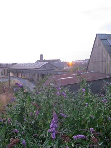Sunset on the trainyard | by jetsetwhitetrash