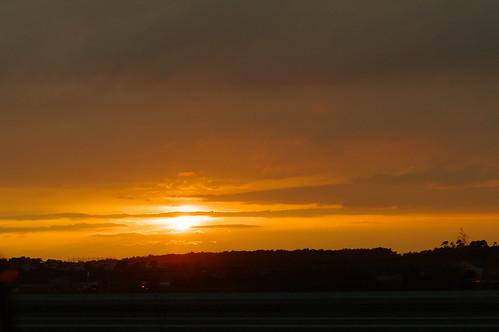 sunset orange japan niigata 夕日 settingsun 夕焼け オレンジ tainai 新潟 k7 windbreak 防風林 smcpentaxm50mmf17 rawdevelopment 胎内 raw現像