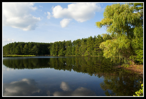 trees lake reflection nature water clouds landscape pond massachusetts newengland willow weepingwillow
