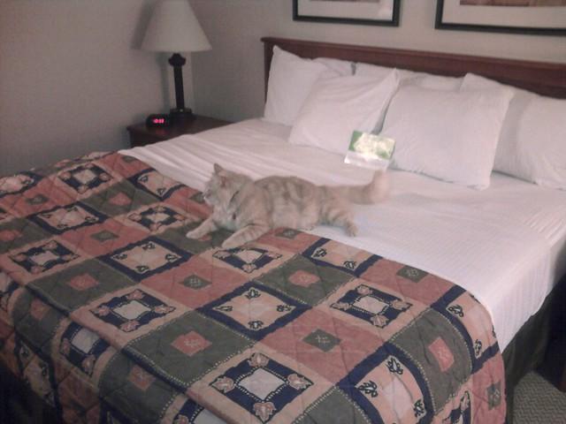 Our first stop: La Quinta, Albuquerque, NM