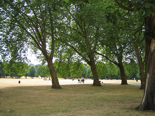 Greenwich Park | by jacobchristensen