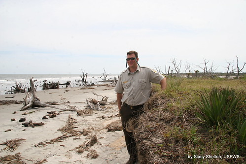 Eroded levee | by USFWS/Southeast