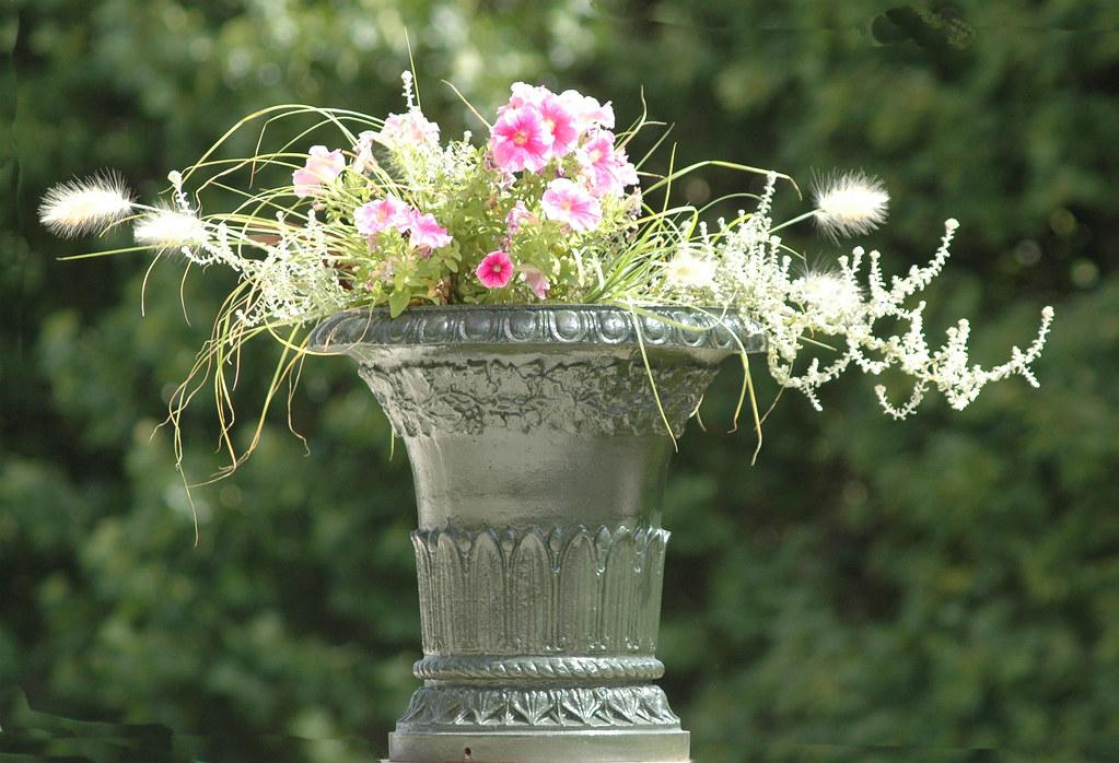 2010.08.01.059 PARIS - Jardin des Plantes - vasque fleurie… | Flickr