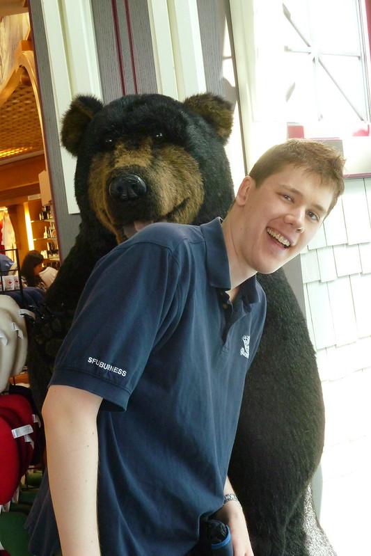 YVR Airport Bears