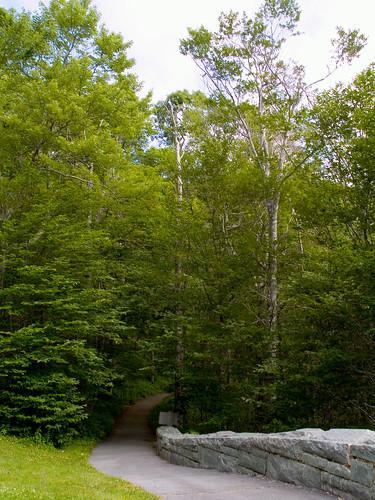 Views of the Blue Ridge Mountains | by mdesisto