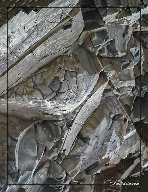 rocher  de turini