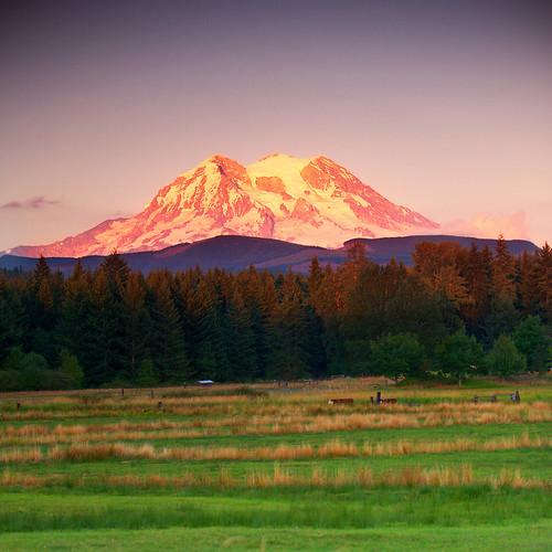 sunset mountain green volcano nationalpark purple mtrainier 70200f28 aspenglow