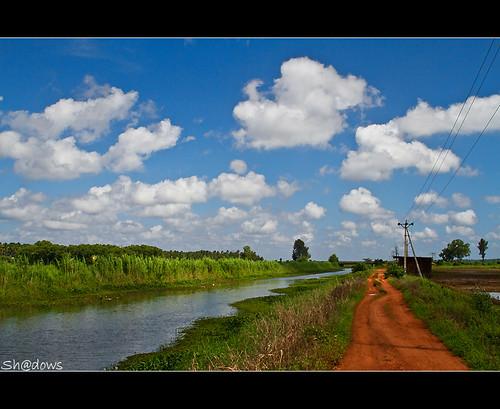 street blue green clouds canon landscape shadows bluesky kerala 7d ricefield paddyfield thrissur shdows greenary sarin canonef24105mmf4isl ef24105mmf4isl sarinsoman keralarain canon7d nizhal kanjaanipaadam kanjanipaadam gettyimagesindiaq3