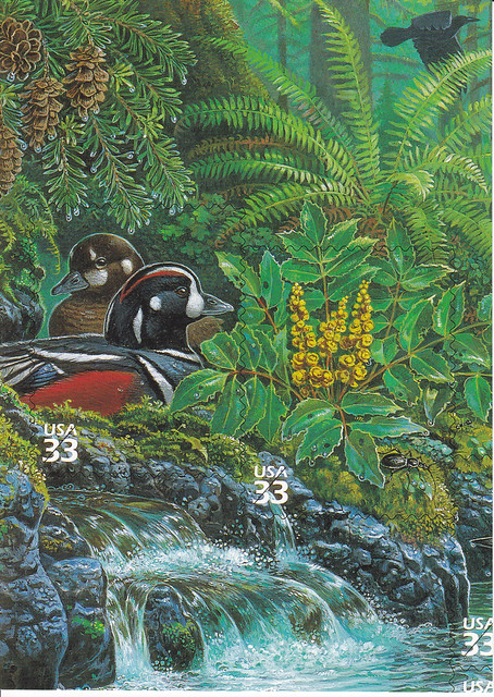 USPS Pacific Coast Rain Forest Stamp Sheet Design Postcard