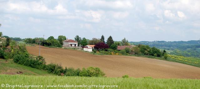 Lusignan-Petit, coin de campagne