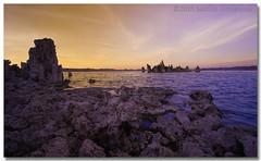 Mono Lake Unreality II