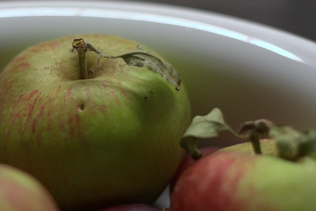 24082010 (Day 236) – Rustic apples