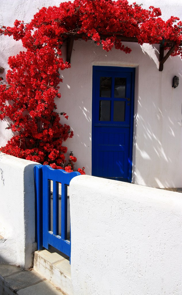 House And Bougainvillea Facade Red Flickr