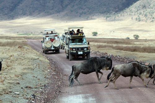 Safari vehicles, Ngorongoro Crater