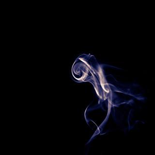 The Smoke Embryo | by TimOve