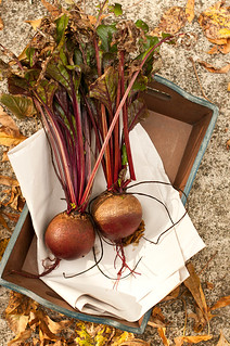 fresh beets in tray | by 3liz4