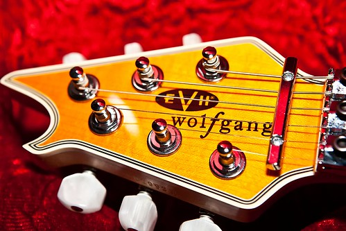 My New EVH Wolfgang LEFT HANDED
