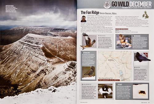 BBC Wildlife Magazine - December 2010