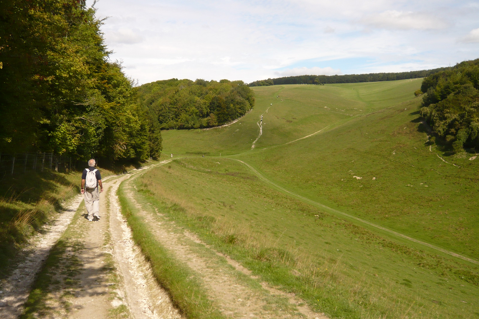 Arundel Path C's Uncle leaving us behind