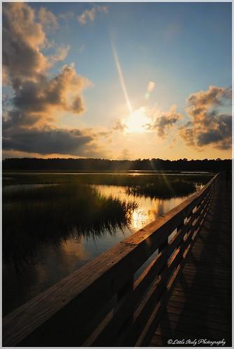 beach weather project nikon warm cloudy southcarolina sunny marsh atlanticocean sandunes southeastcoast nikond60 huntingtonstatebeach huningtonbeachstatepark