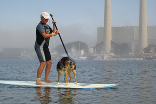 Kerry Lee Bates with her dog Bluey on her SUP Board in Morro Bay, CA | by mikebaird