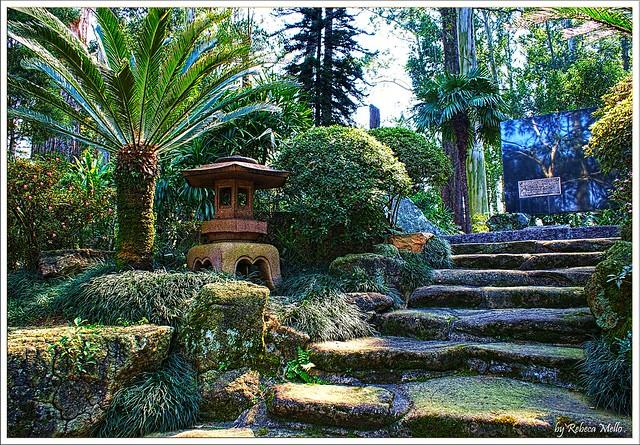 Japanese garden ..