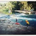 Rio Vista crossprocess kayakers