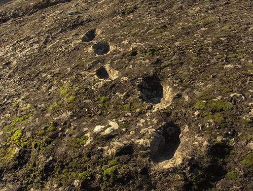 Ciampate del Diavolo :hominid fossil footprints at Tora e Piccilli | by edmondo gnerre