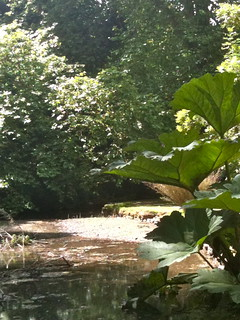The weir at Bibury Mill | by Tip Tours