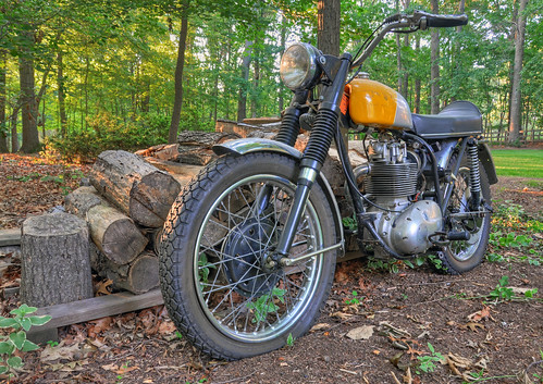 BSA in the Backyard | by Reid Kasprowicz
