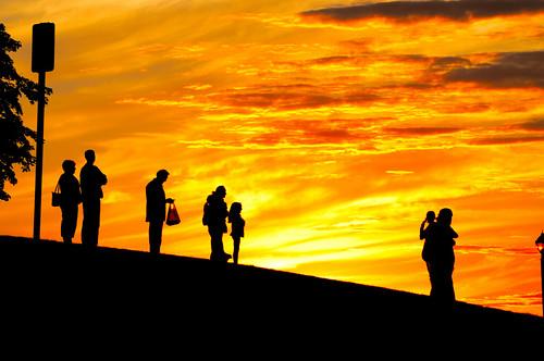 sunset sky usa silhouette yellow nikon maine d300 nikond300