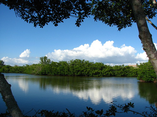 blue trees sky reflection water clouds outdoors florida fl 1001nightsmagiccity