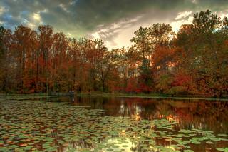 Walney Pond Fall Sky | by SoundFocusPhotography