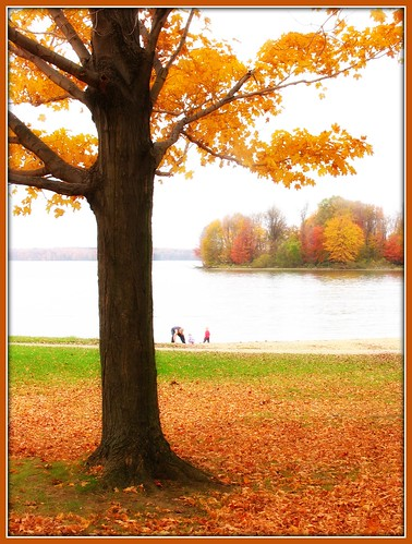 autumn orange fall kids children dad father daughter son pa parent pymatuningstatepark pymatuninglake