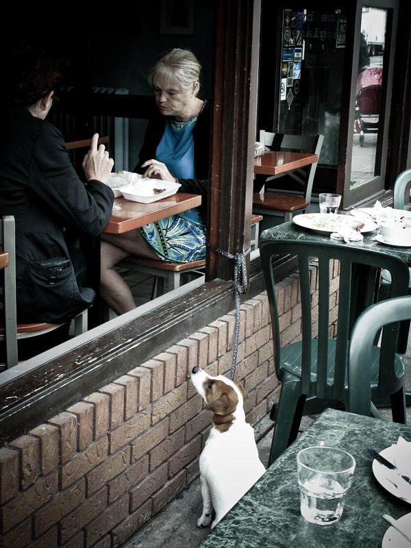 Streetphotography Toronto