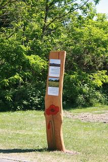 Nature Marker,Poppy, Llittledown,Bournemouth, Dorset