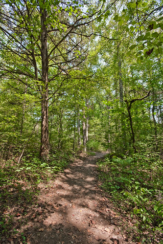 statepark park trees nature outdoors path tennessee redclay trail bradleycounty