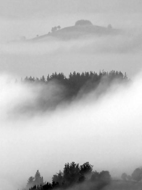 Amanece lentamente entre niebla - Sunrise slowly with fog