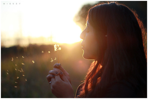sunset girl dof dandelion t2i