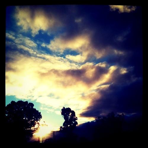 sunset sky sun tree clouds dark square lomo lofi 2010 iphone instagram