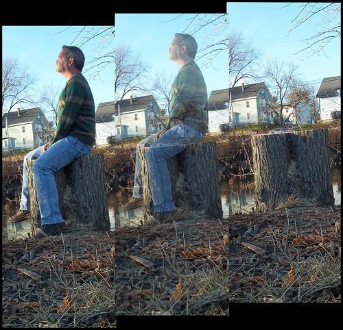 autumn gay portrait sky selfportrait man fall beard stump saltandpepper 365project davidsullivan davidnewengland