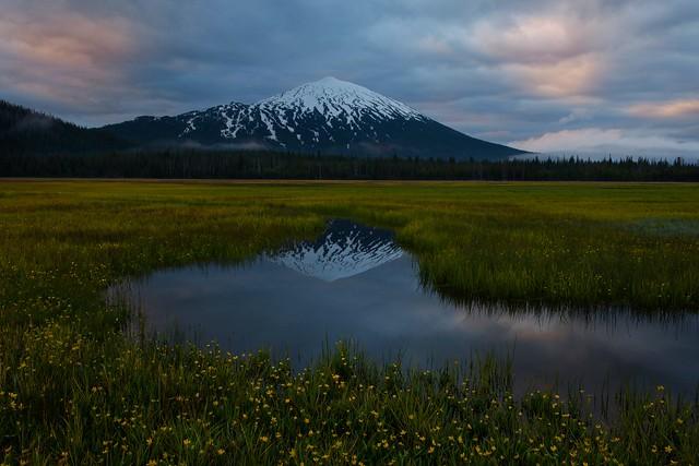 Mt Bachelor Meadow